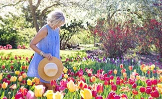 Woman in tulip field